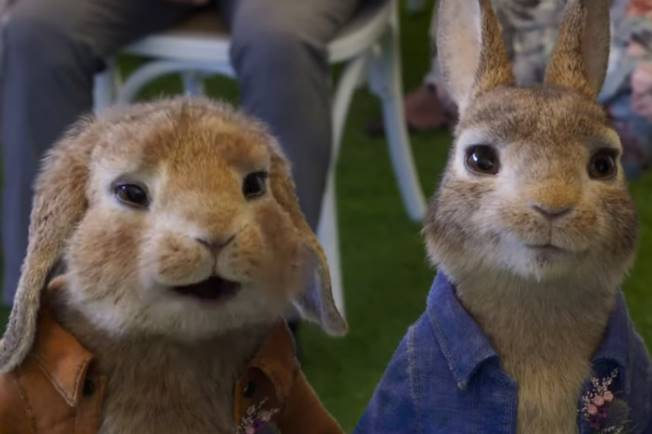 Peter Rabbit 2 :The Runaway 2020 Film Opis i Radnja Filma, U kinima Trailer