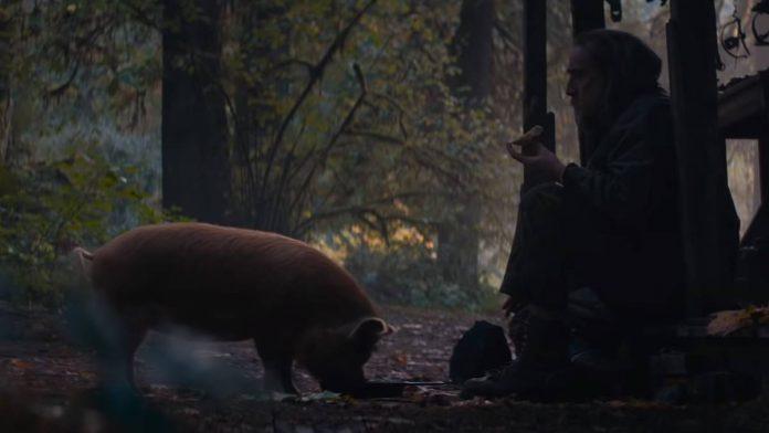 Pig 2021 Film Opis i Radnja Filma, U kinima, Trajanje Filma, Trailer Filma, Glumci, Strani Filmovi 2021, Imdb Ocjena. Youtube Screenshot